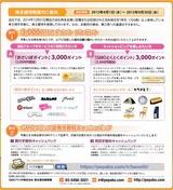 2015_03GMOペパボ株主優待選択
