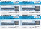 2015_05ANAHD株主優待