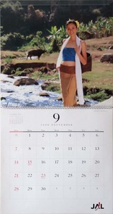 2007JALカレンダー