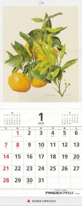 2017_12武田薬品工業カレンダー