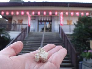 三浦七福神ツーリング24�延壽寺にナゾの生物を奉納