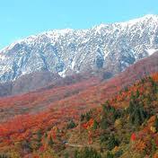 紅葉で蒜山に行くなら必ず訪れた方が良い場所教えます