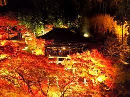 京都の紅葉の見ごろとベストスポットランキング教えます