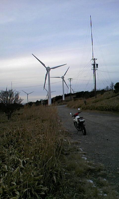 aoyamakougen