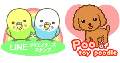 Poo ロゴ