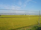 留萌本線沿線の田園風景