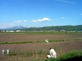 富良野〜布部間の車窓風景
