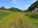 草に埋もれた線路