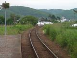 駅先の線路を犬が横断