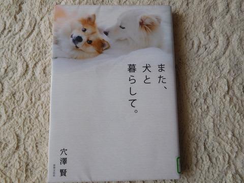 DSCN1330 - コピー