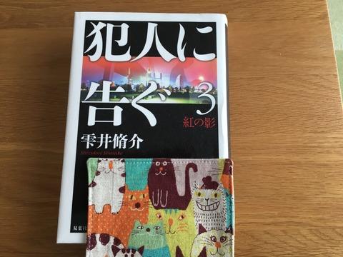 IMG_2496 - コピー