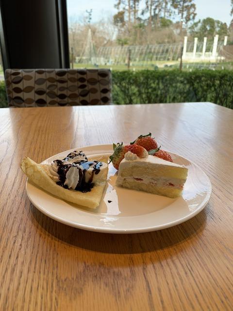 ホテル日航成田 ちゅちゅポン-2