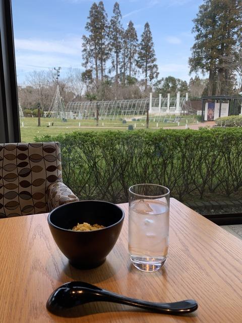 ホテル日航成田 ちゅちゅポン