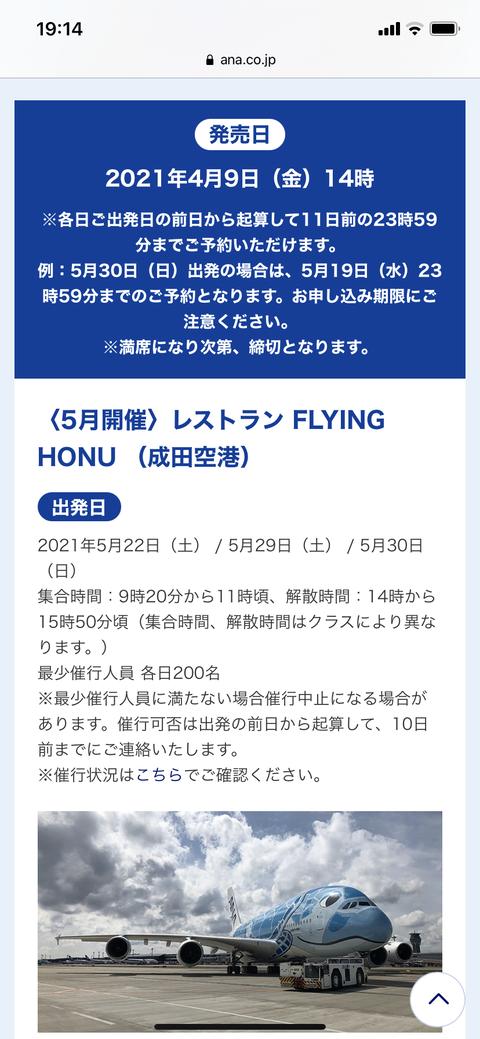 FLYING HONU ちゅちゅポン
