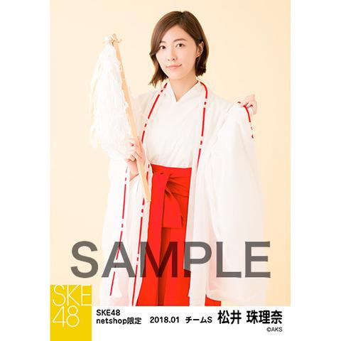 SK-126-1712-37714_p03_500
