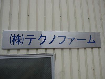 6f954961.jpg