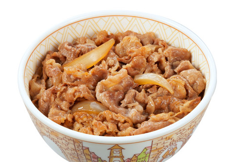 photo_gyudon_100100