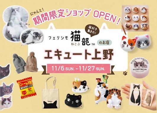 shop11-1