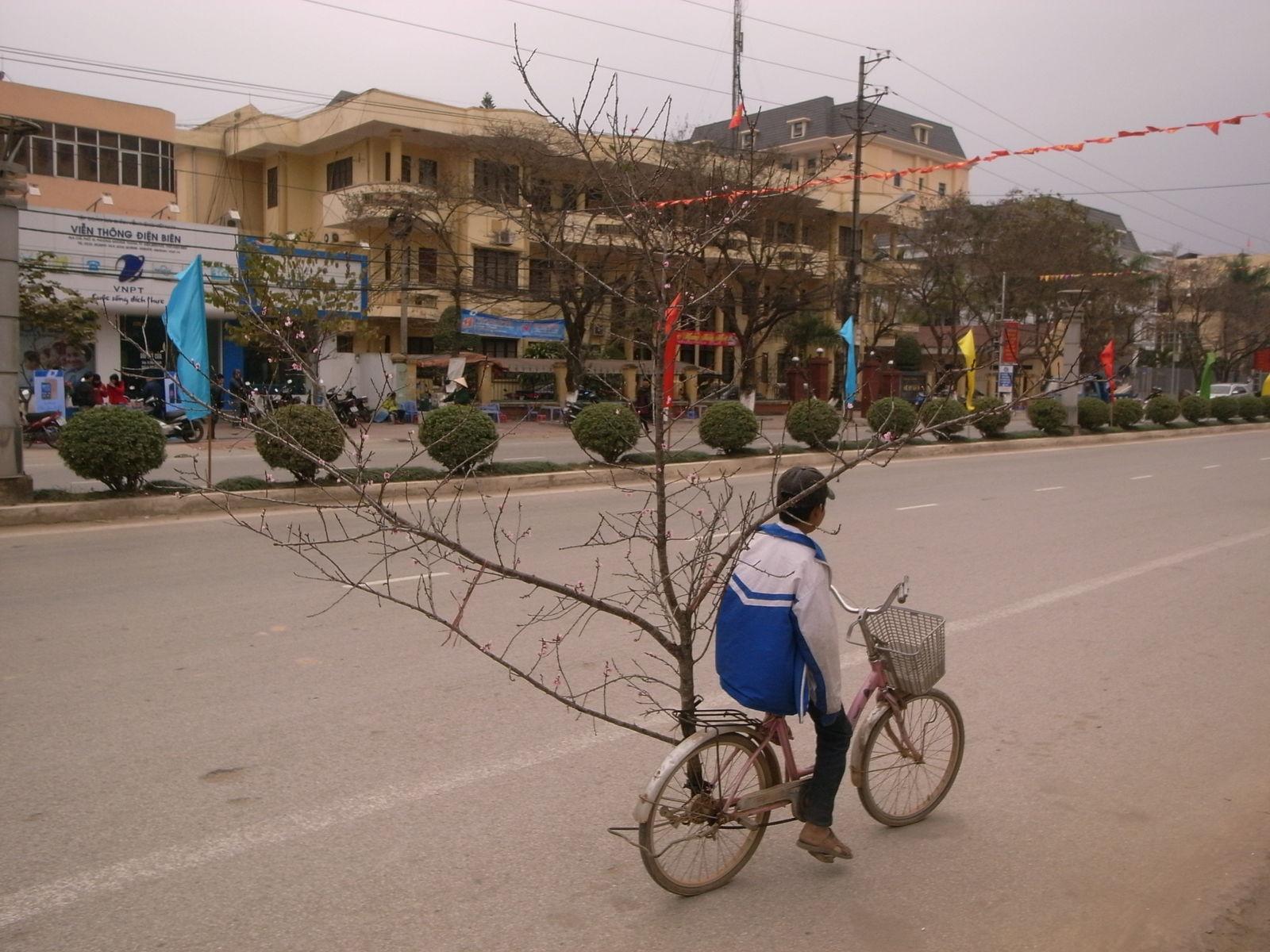自転車ときどき世界1周 : 豚の ...