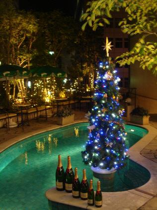 クリスマスツリーとプール
