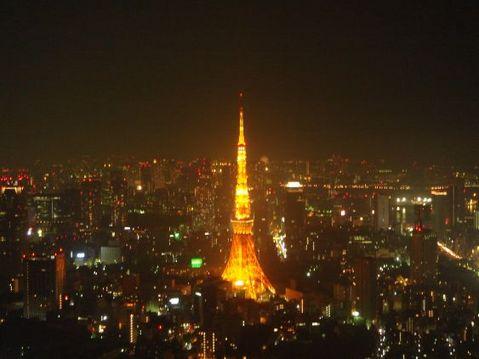 東京タワーに問う