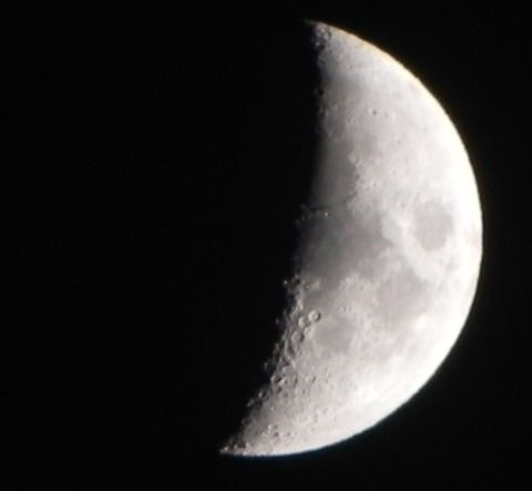 夕方の月-1