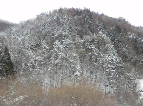 景色-雪02
