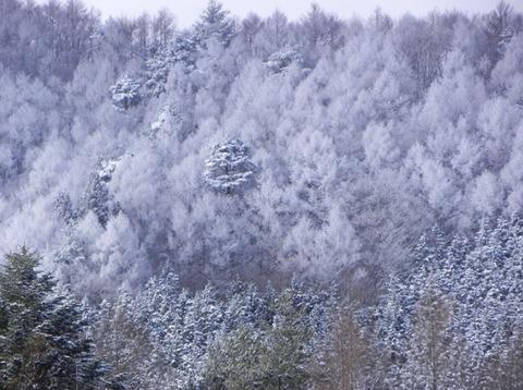 景色-雪01