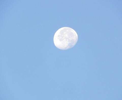 昼の月-3