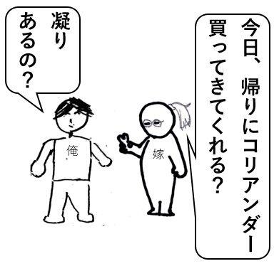 コリアンダー1