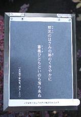 b999f78a.JPG