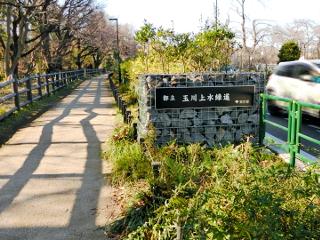 suginami_tamagawajyousui_sengenbashi_a
