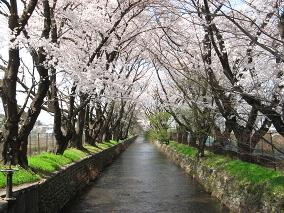 tachikawa_mikagebashi_a