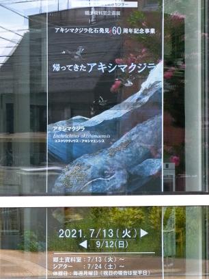 akishima_akishimaensis_a