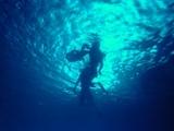 海の底から光を見てみたい