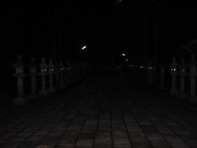 早朝の奥の院参道