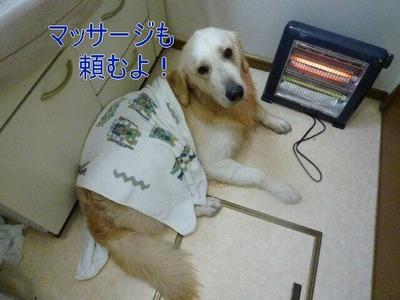 blog4_091227