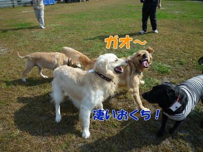 blog6_091019