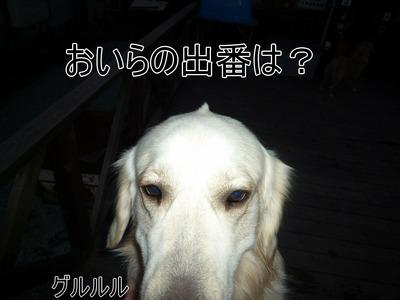 blog5_100126