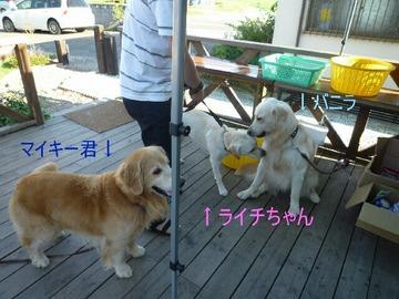 blog6_090814