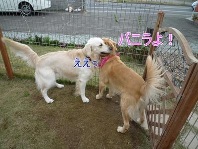 blog4_091123