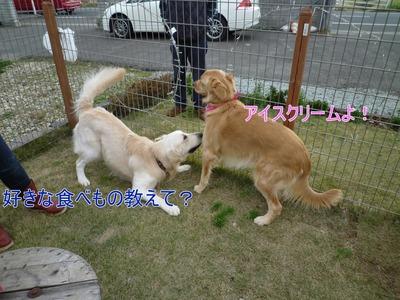 blog2_091123