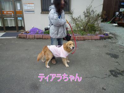 blog7_104018