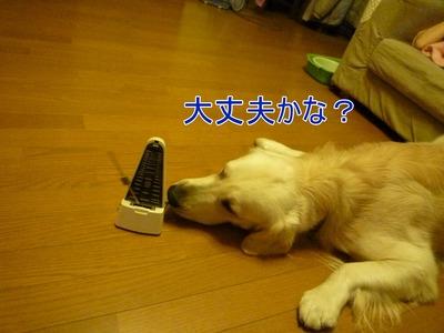 blog3_091130