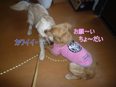 blog4_100213