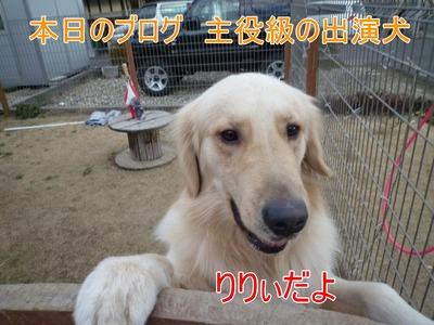 blog4_100125
