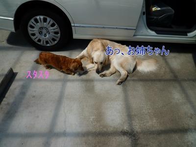 blog6_104025