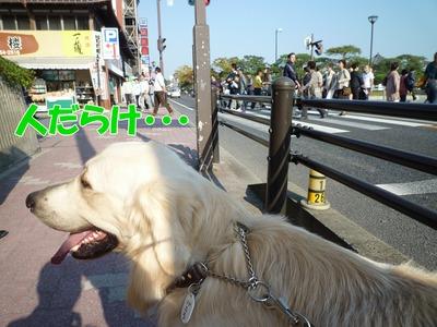 blog3_091021