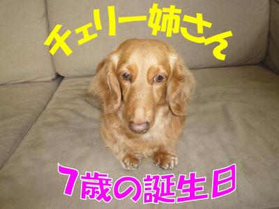 blog1_100420