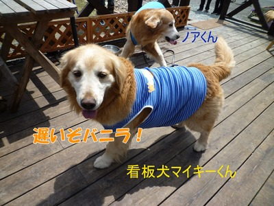 blog2_104018